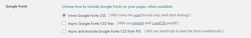 FVM Konfiguration - Teil 5 - Google Font Optionen